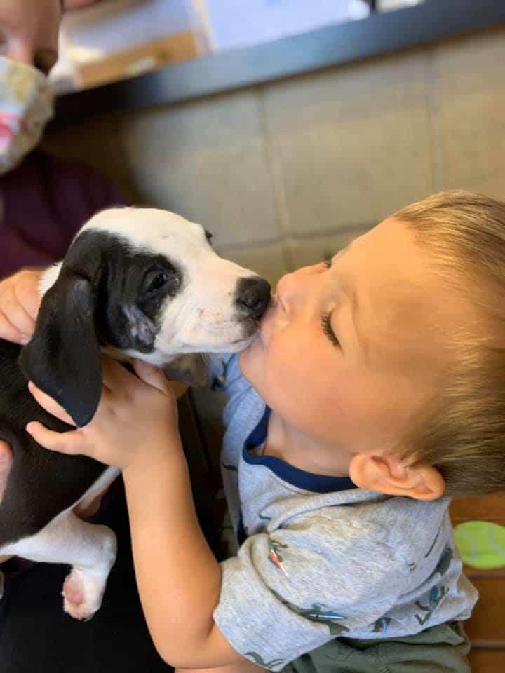 Bentley Boyers beijando a cachorrinha Lacey