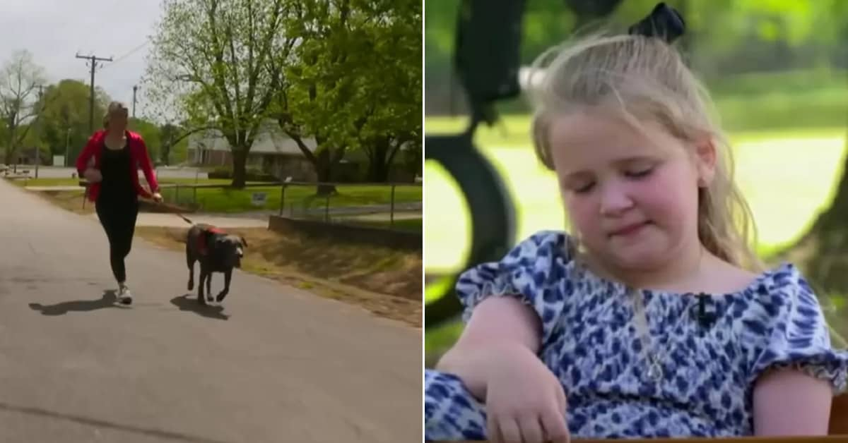 Jogger and her dog brings comfort to a grieving 6-year-old girl during her father's funeral - my positive outlooks